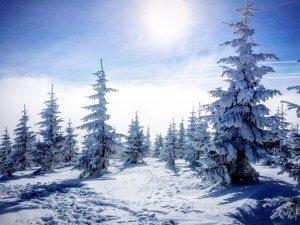 נוף מאתר הסקי
