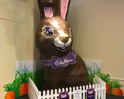 ארנב בפעל השוקולד