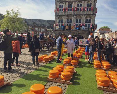 שוק גבינות הולנד